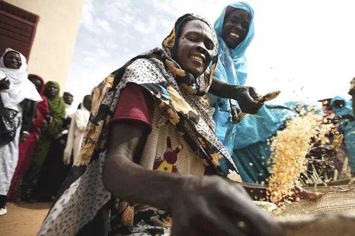 Objetivo 12: Consumo responsable y producción   UNDP