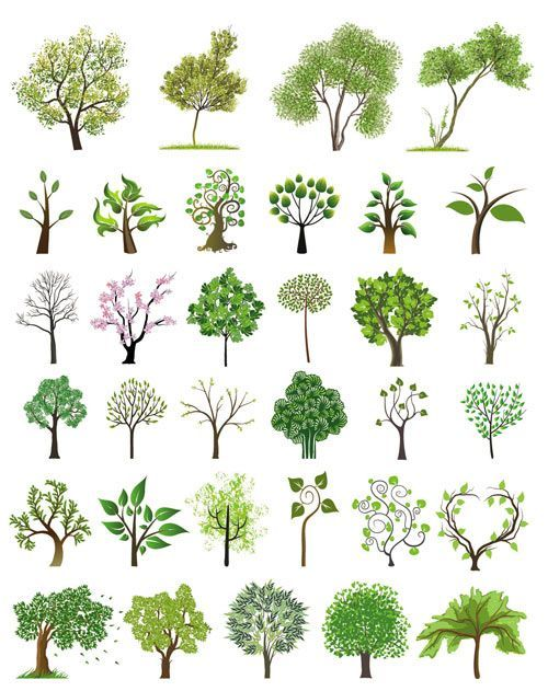 Tree illustrations vector | Free Stock Vector Art & Illustrations, EPS, AI, SVG, CDR, PSD