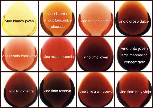 Qué determina el color del vino? / Blog - Bodega Santa Cecilia ...