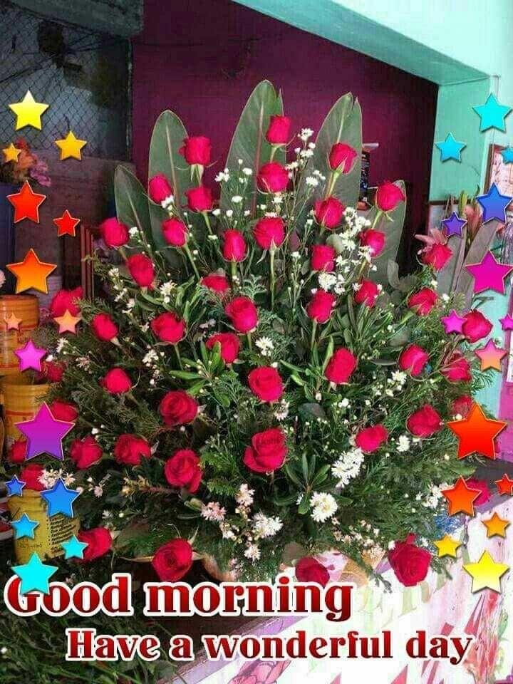 ସପରଭତ Good Morning Have A Wonderful Day Sharechat