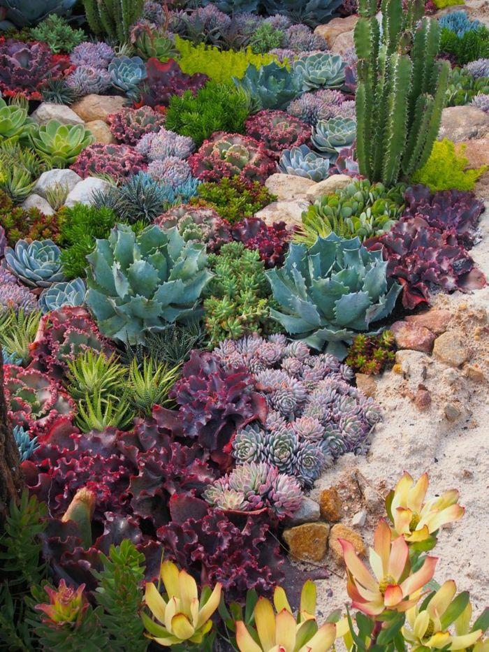 1001 + idées fantastiques de décor avec plantes grasses d ...