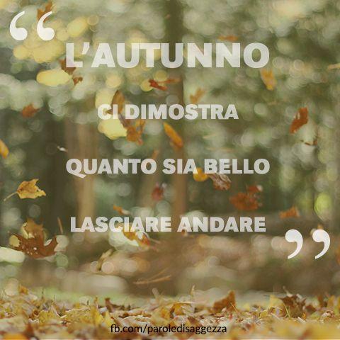 L'Autunno ci dimostra quanto sia bello lasciare andare #autunno #frasi #pensieri #autunnali #aforismi #stagioni #vita #amore