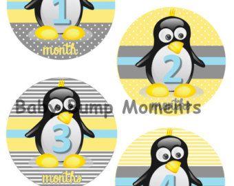 imagenes de pinguino bebes - Buscar con Google