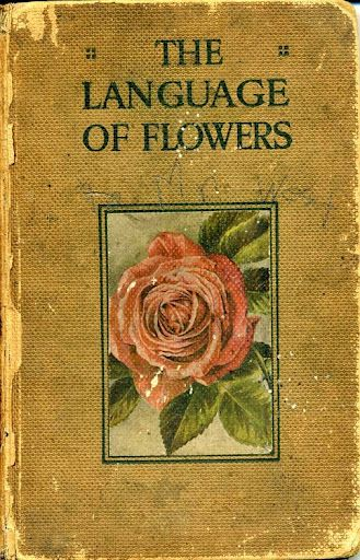 language of flowers book dictionary