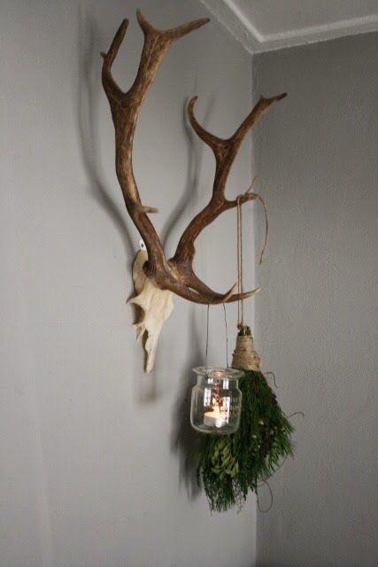 Meer dan 1000 idee n over gewei decoraties op pinterest for Gewei schedel