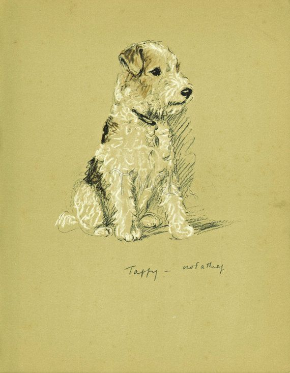 TERRIER Dog Print, Puppy Print, Wall Decor, Wall Art, Antique Decor, Interior Design, Lucy Dawson, 1930s Home Decor, Dog Decor, B-3