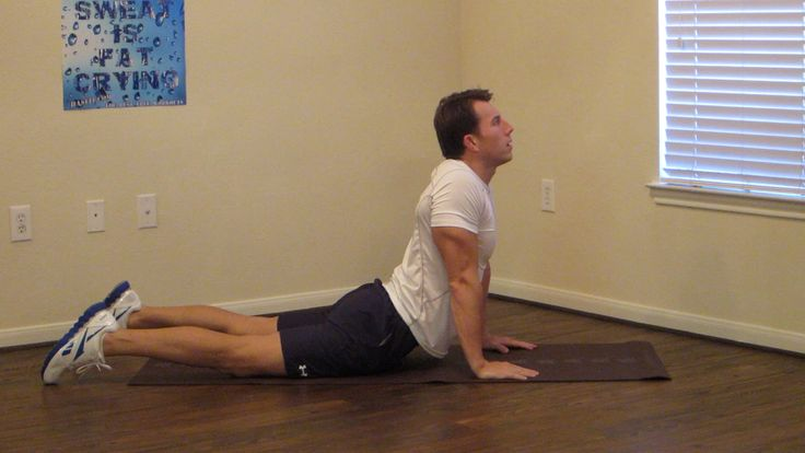 20 Min Lower Back Rehab - HASfit Lower Back Stretches for Lower Back Pain Exercises and Strengthening  Workout