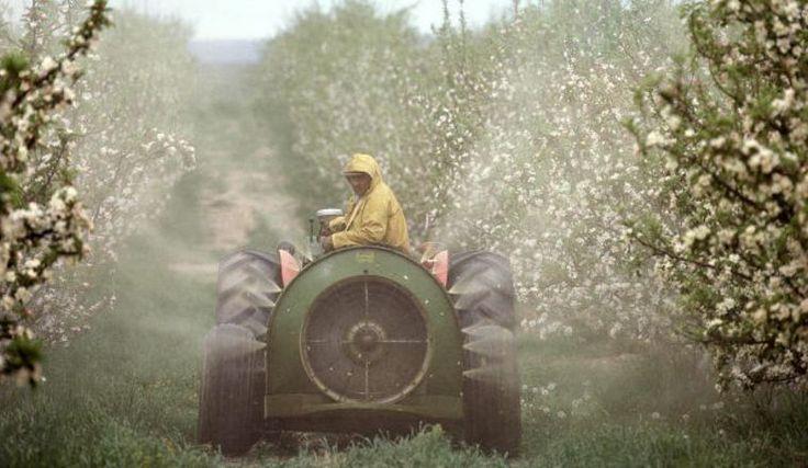 Arrivano nuove conferme della pericolosità dei pesticidi per la salute pubblica e per l'ambiente. E i cittadini si mobilitano