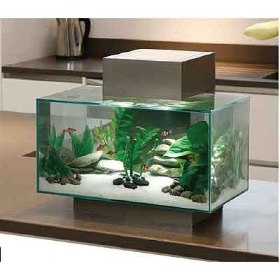 Fluval EDGE Aquarium U0026 Accessories, Full Aquarium Set Up For Sale Online