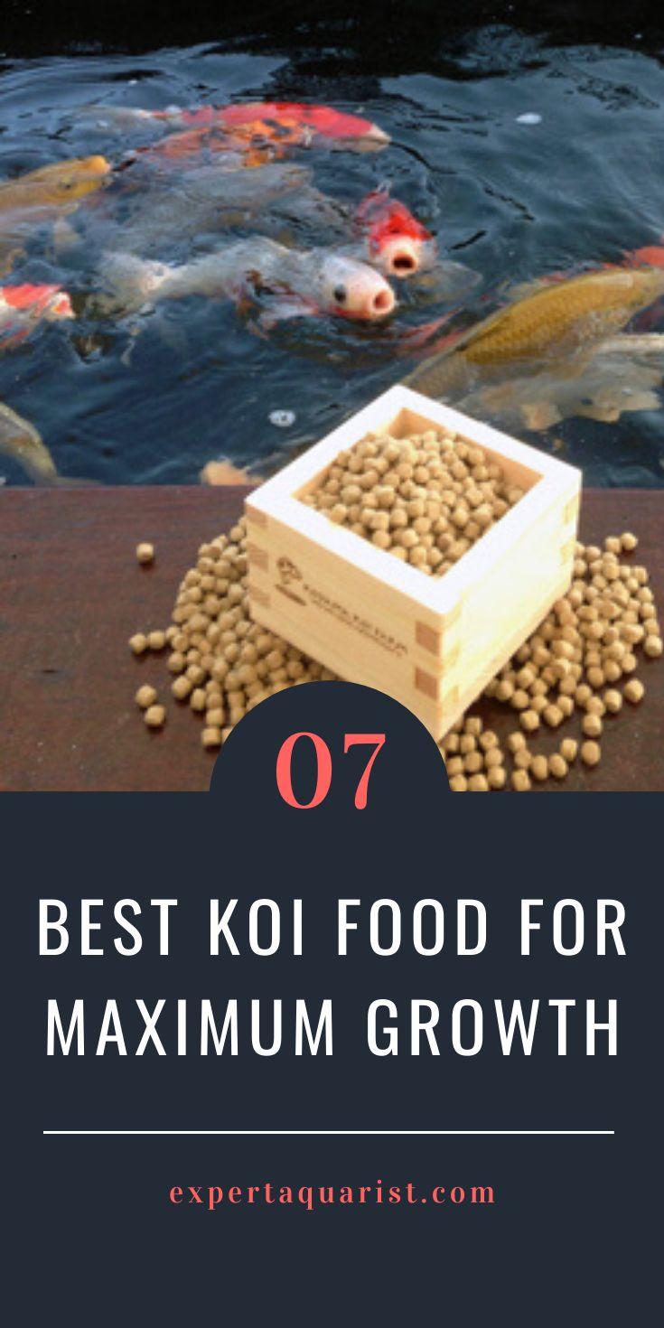 pond fish food price