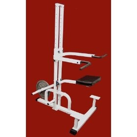 Assisted Chin & Dip Station, (pull up bar, chin up bar, power tower, dip station, dip stands, chin up, pull ups, exercise, p90x, chin-up)