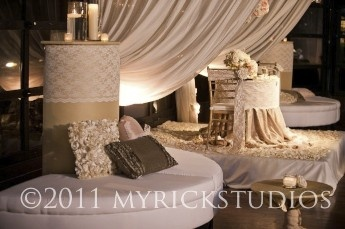 This photo is from an Angela Proffitt wedding. It features Visual Elements' drape that creates a soft divider between seating areas.