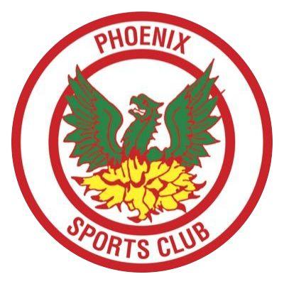 1935, Phoenix Sports F.C. (England) #PhoenixSportsFC #England #UnitedKingdom (L16841)