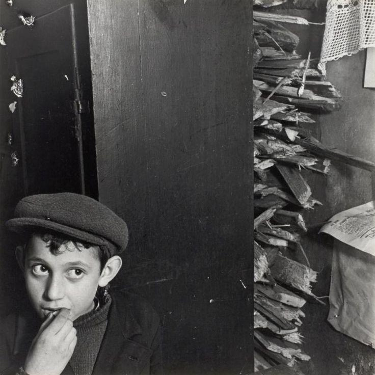 W 1935 r. Vishniaca zatrudnił Joint. Miał dokumentować życie w ubogich społecznościach żydowskich w Europie Wschodniej. Zdjęcia stanowią też ostatni, całościowy, wykonany przez jednego fotografa portret społeczności żydowskich u progu Zagłady.  Dziś uważny jest za jednego z najważniejszych dokumentalistów życia społecznego tamtych czasów.   Na zdjęciu: Chłopiec i opał w mieszkaniu w suterenie, ulica Krochmalna, Warszawa, ok. 1935–1938.