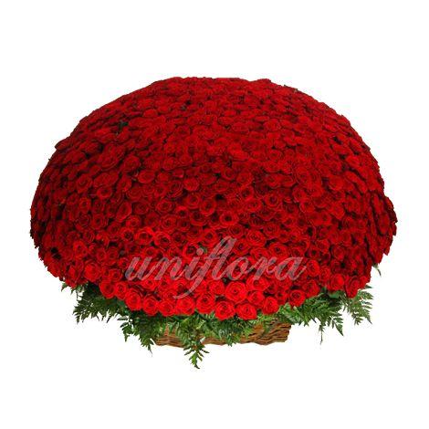 """Сделать предложение руки и сердца, поможет этот шикарный букет. Она скажет """"Да""""!!! http://uniflora.com.ua/bouquet/buket-iz-1001-krasnoj-rozy-gran-pri-ukr.html"""