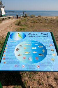 Parks Victoria - Ricketts Point Marine Sanctuary