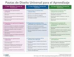 Pautas de diseño universal para el aprendizaje - Daniel Valdez