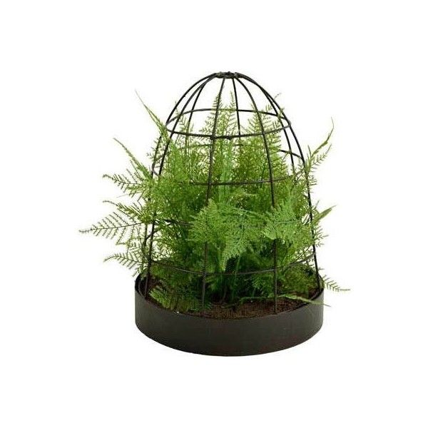 Picnic at Ascot Artificial Asparagus Fern - Green found on Polyvore featuring home, home decor, floral decor, green, green home decor, picnic at ascot and metal home decor