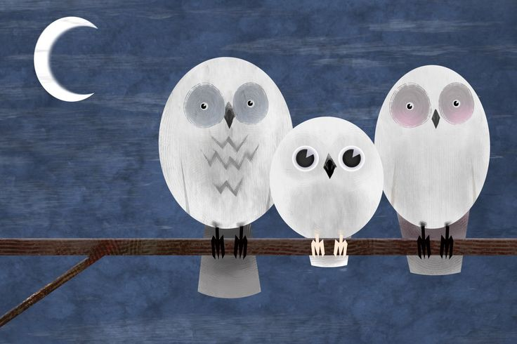 owls by Aaron White