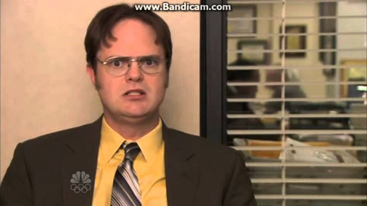 THE OFFICE REACTION PICTURES The office reaction pictures One direction reaction pictures Allergic reaction pictures Funny reaction pictures Reaction pictures tumblr Best reaction pictures The office reaction gifs The office camera stare The office stare gif