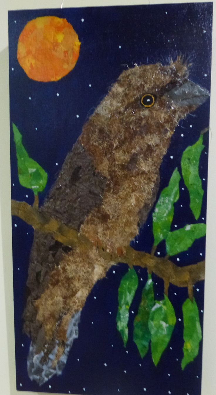 Tawny Frog Mouth torn paper collage,