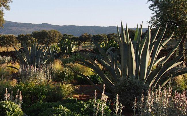 Un extenso jardín en la dehesa de Salamanca : Urquijo-Kastner