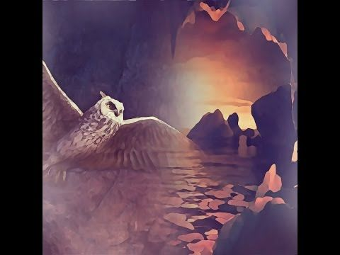 BELLA DONNA digital art   Hogwarts School Owl Art 15