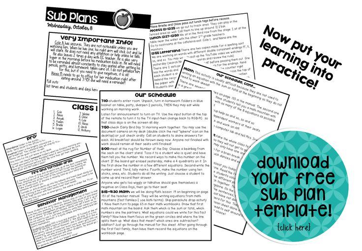 Sub Plan Template freebie from The Tattooed Teacher.