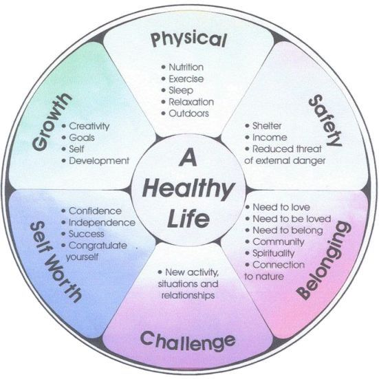 6 Elements that make up a Healthy life in todays modern society