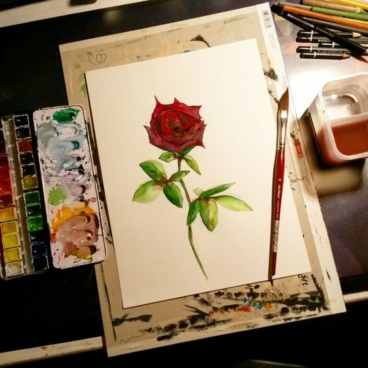 Aquarelle Rose