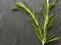 "rosemary helps clear congestion If you're feeling under the weather, add ¼ teaspoon of rosemary to a meal can ease congestion and sinus pressure, plus help speed your recovery from a head cold. ""Rosemary's antioxidants dampen sinus inflammation, improve drainage and can even strengthen your ability to destroy cold viruses."" Rosemary tastes great in omelets, herbed breads, roasted potatoes and poultry dishes. Or sip one cup of rosemary tea daily until your symptoms ease."