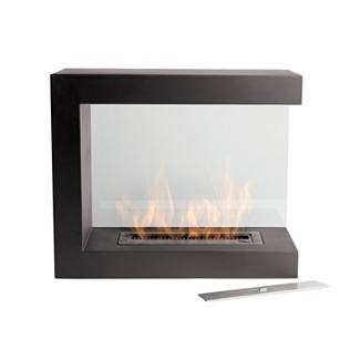 1000 ideas about portable fireplace on pinterest for Denatured ethanol fireplace