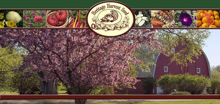 Heritage Harvest Seed