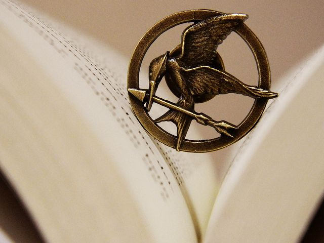 The Hunger Games.... want to read it sooo bad.