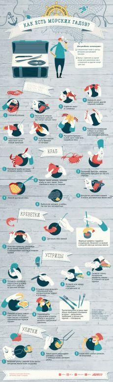 Лобстеры, крабы, улитки: как нужно есть морепродукты? Инфографика   Инфографика   Вопрос-Ответ   Аргументы и Факты