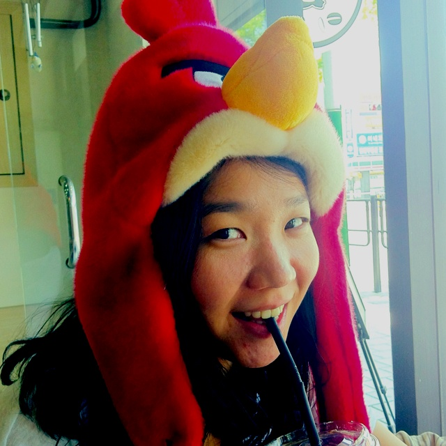My angry bird - She is my first pinterest.  돼지를 잡아라