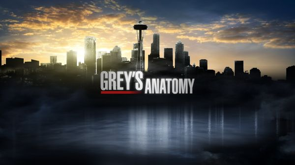 Grey's Anatomy Soundtrack, Vol. 04