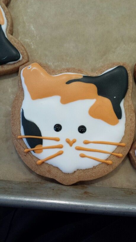 calico cat head cookie feral cat coalition
