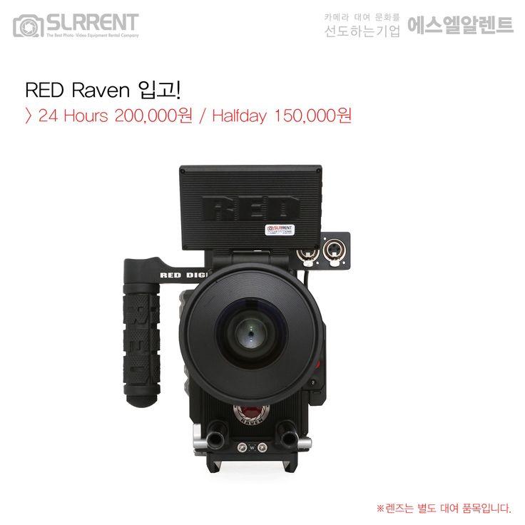 RED Raven 24Hours 200,000원 / Halfday 150,000원 . ✔RED Raven SPECS - 4.5K Professional Digital Camera - 4.5K RED DRAGON® 9.9 Megapixel CMOS sensor - Redcode Raw, Apple Prores - DR 16.5+ stops - Canon EF Mount - 4.5K at 120 fps - 2K at 240 fps . www.SLRRENT.com . . #RED #Raven #레드 #레이븐 #RedRaven #R3D  #RedWeapon #Redcamera #cinema #Hollywood #epic #cameragear #digitalcinema #4K #cinelens #EFmount #camerarental #카메라대여 #캠코더렌탈 No.1 #SLR렌트 #에스엘알렌트 #SLRRENT.com