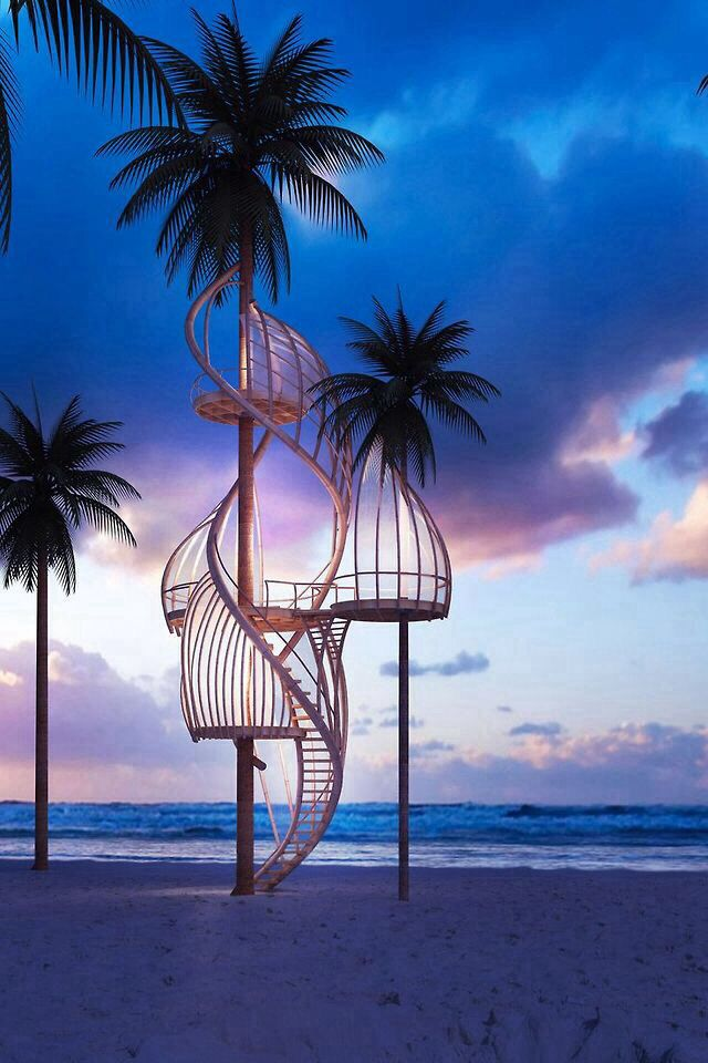 """Palm""""s nest #architecture #outdoors #tree"""