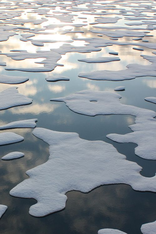 floating cap of sea ice in the Arctic Ocean