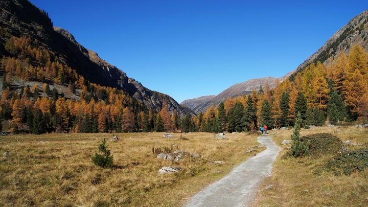 Hammermässig schöne Herbstwanderungen