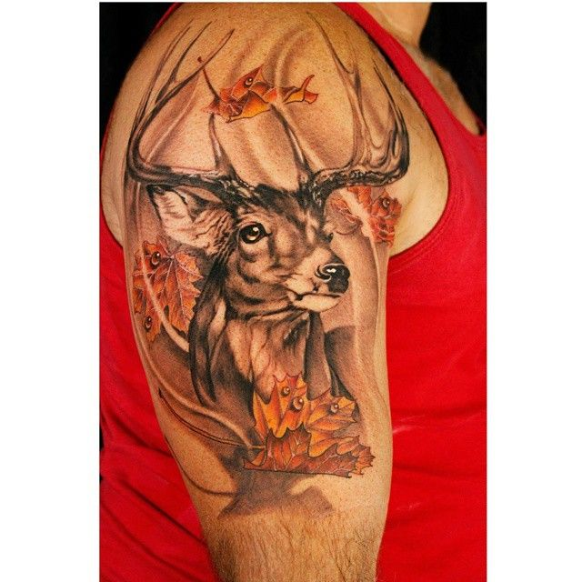 buck deer maple leaf realism portrait tattoos pinterest. Black Bedroom Furniture Sets. Home Design Ideas