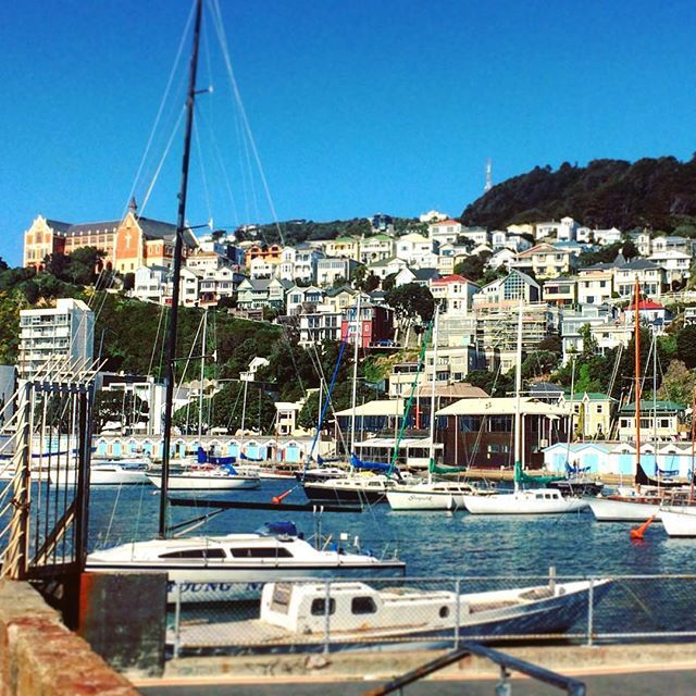 Wellington's waterfront is a must do when visiting New Zealand's capital city!