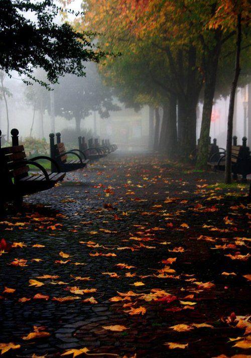 Fall , Caxias do Sul