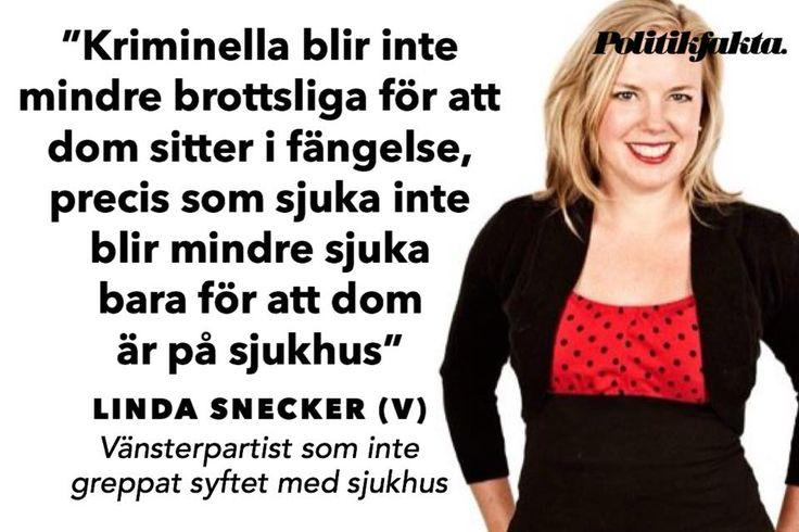 Fantastiskt korkat – men det blir bara olustigt och skrämmande när man förstår att vänstermänniskan sitter i Sveriges Riksdag...