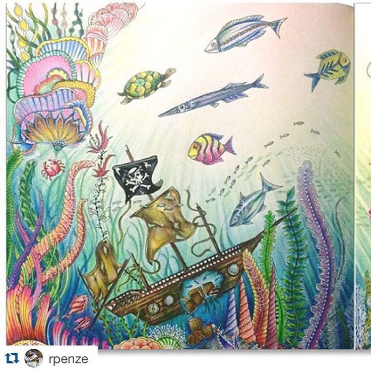 30 best images about lost ocean on pinterest coloring for Colorful fish book