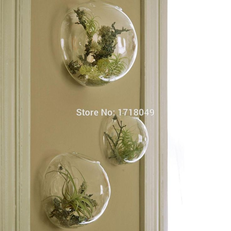 Aliexpress.com : Buy 3pcs/set semicircle glass terrariums,wall fish tank indoor plants holder,wall planter vase wall decoration,home decor from Reliable ...