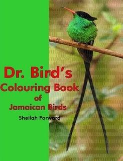Colouring Book Dr Birds
