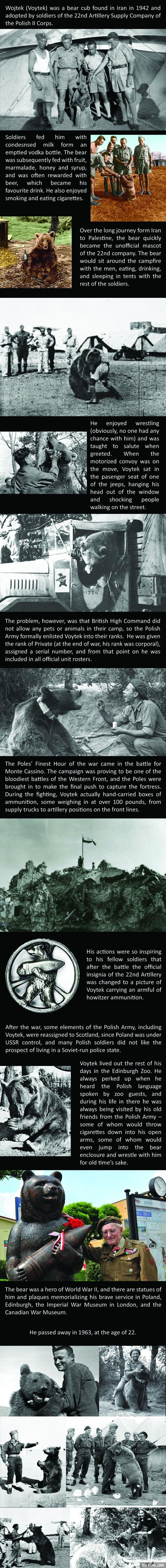 The amazing story of Voytek the Soldier Bear. https://en.wikipedia.org/wiki/Wojtek_(bear)